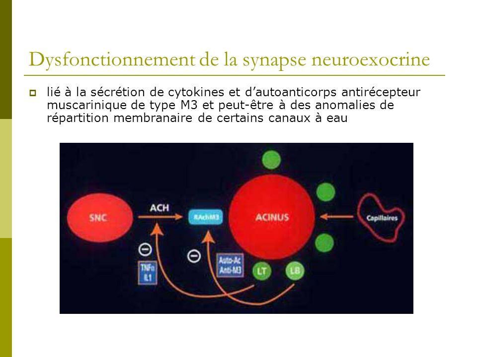 Dysfonctionnement de la synapse neuroexocrine
