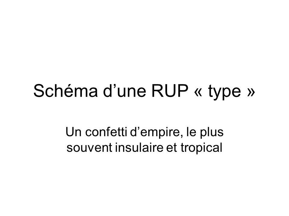 Schéma d'une RUP « type »