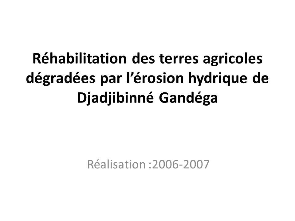 Réhabilitation des terres agricoles dégradées par l'érosion hydrique de Djadjibinné Gandéga