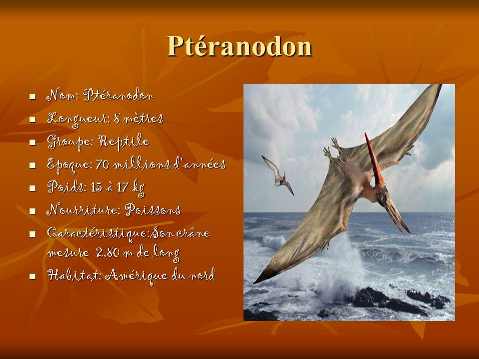 Ptéranodon Nom: Ptéranodon Longueur: 8 mètres Groupe: Reptile