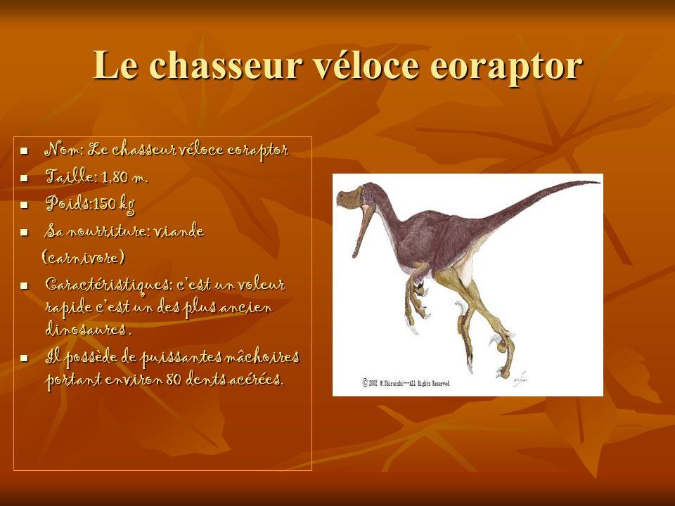 Le chasseur véloce eoraptor