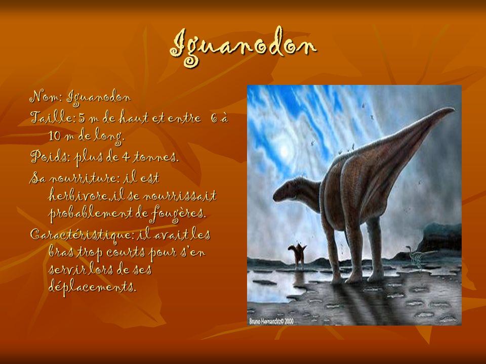 Iguanodon Nom: Iguanodon