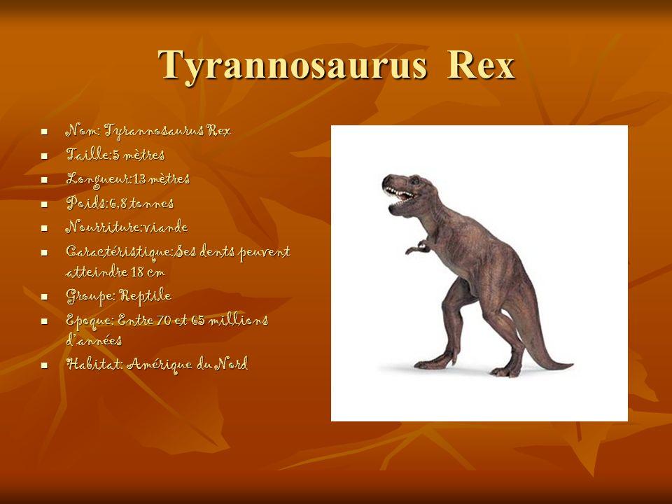 Tyrannosaurus Rex Nom: Tyrannosaurus Rex Taille:5 mètres