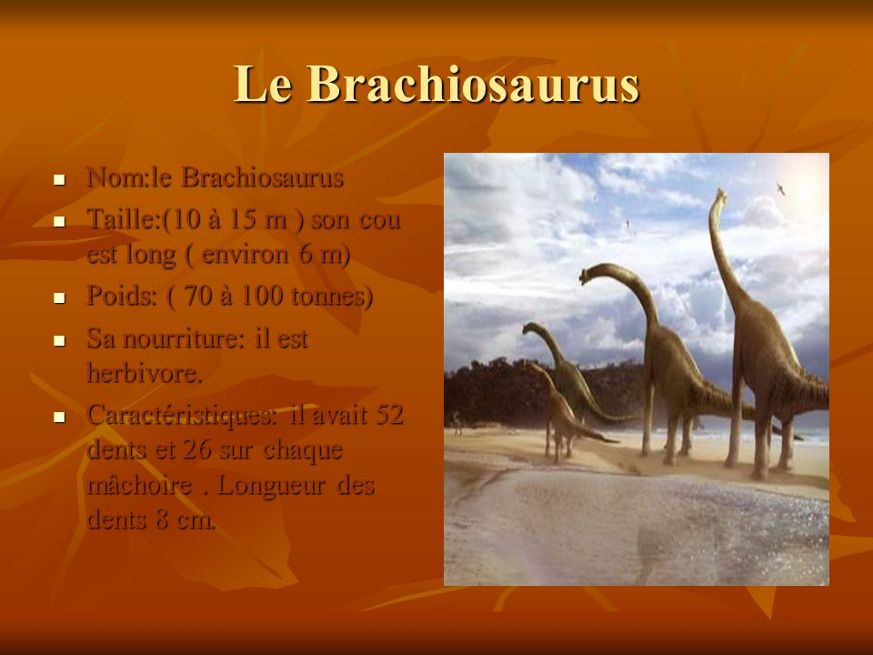 Le Brachiosaurus Nom:le Brachiosaurus
