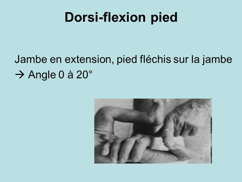 Dorsi-flexion pied Jambe en extension, pied fléchis sur la jambe