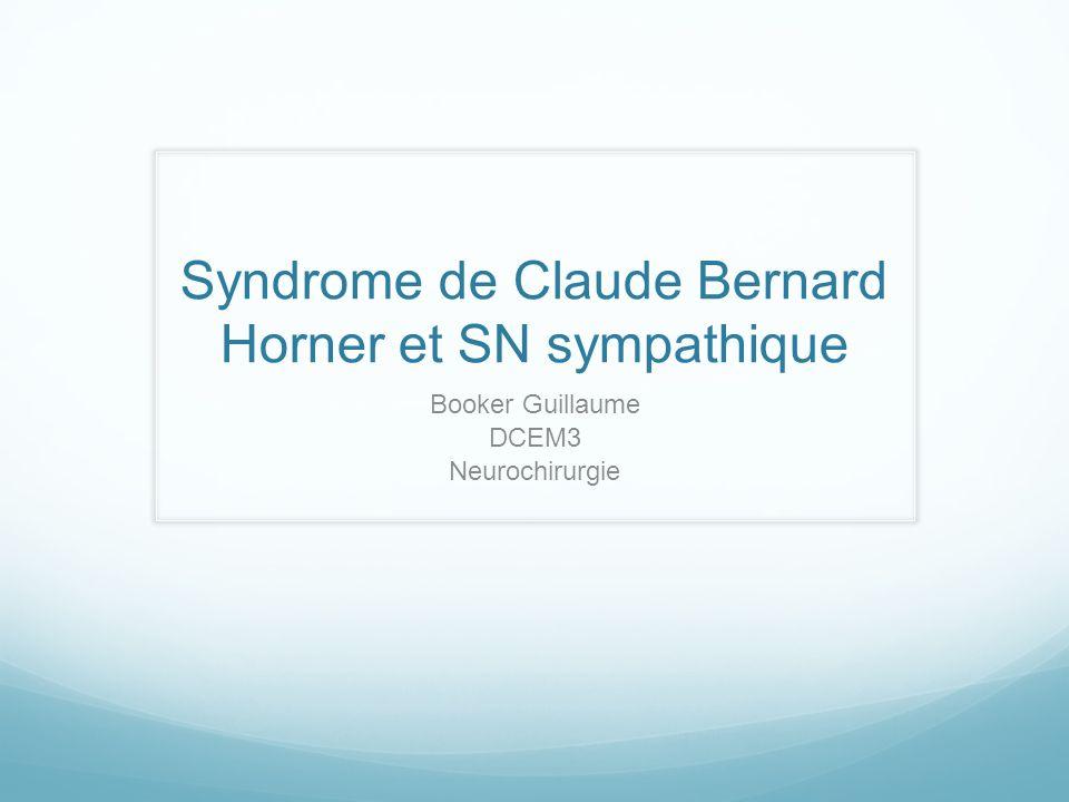 Syndrome de Claude Bernard Horner et SN sympathique