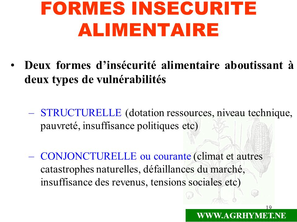 FORMES INSECURITE ALIMENTAIRE