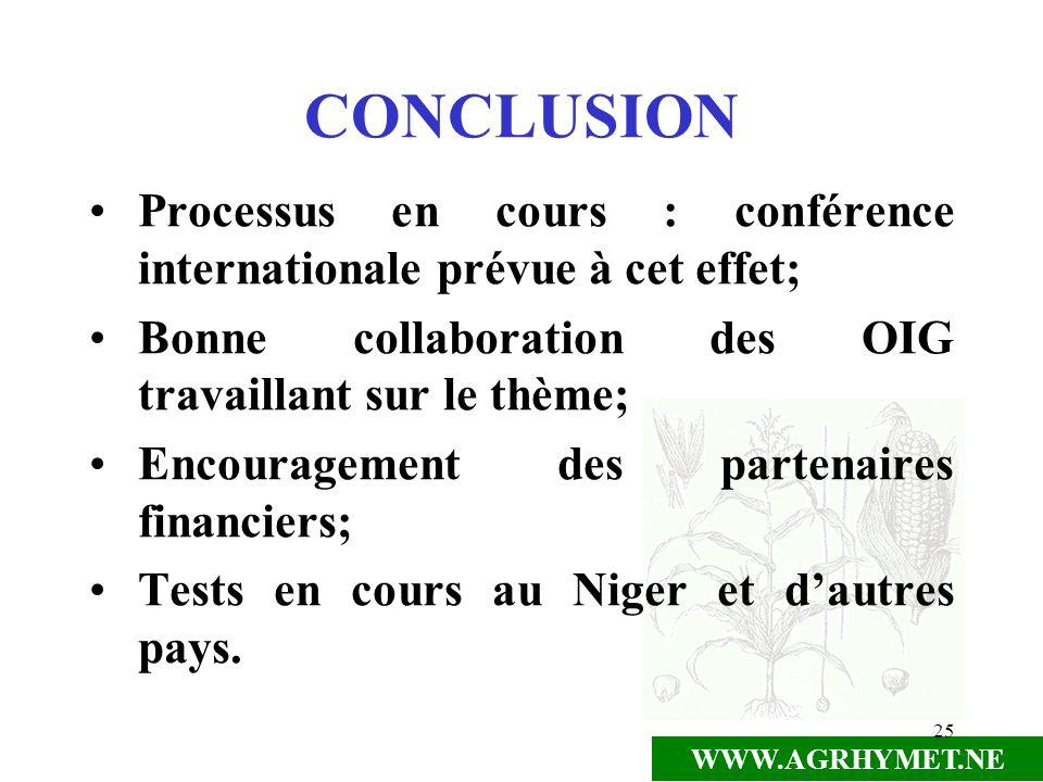 CONCLUSION Processus en cours : conférence internationale prévue à cet effet; Bonne collaboration des OIG travaillant sur le thème;