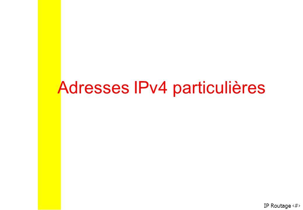 Adresses IPv4 particulières