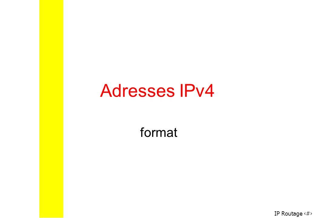 Adresses IPv4 format