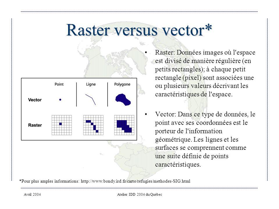 Raster versus vector*