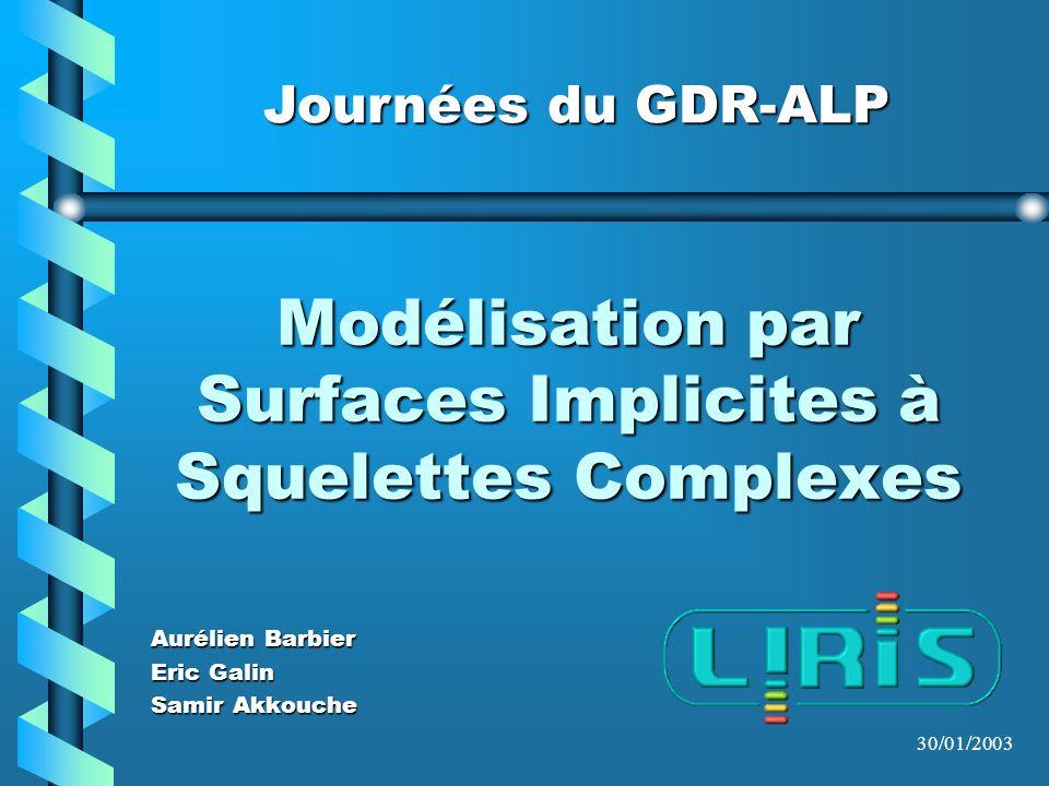 Modélisation par Surfaces Implicites à Squelettes Complexes