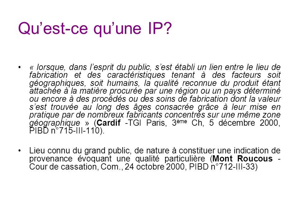 Qu'est-ce qu'une IP
