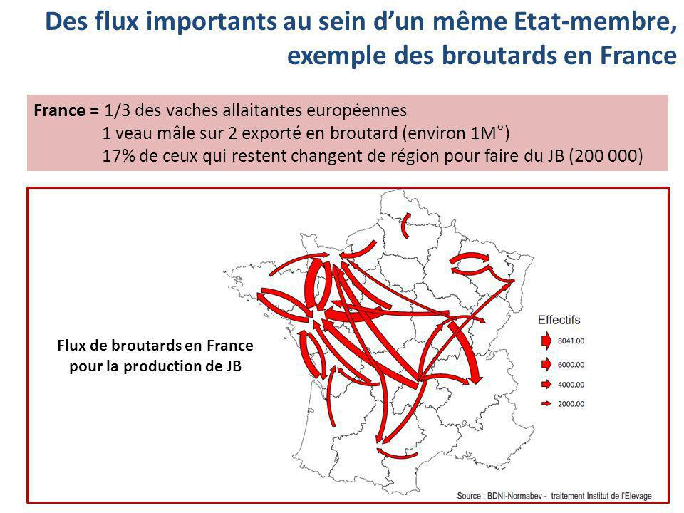Flux de broutards en France pour la production de JB
