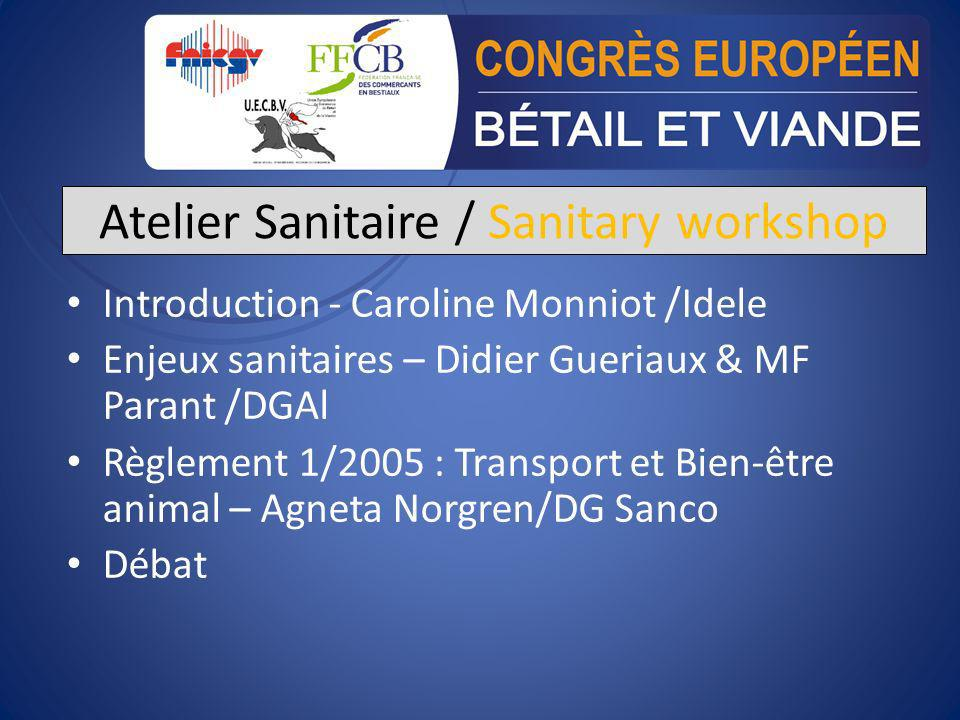 Atelier Sanitaire / Sanitary workshop