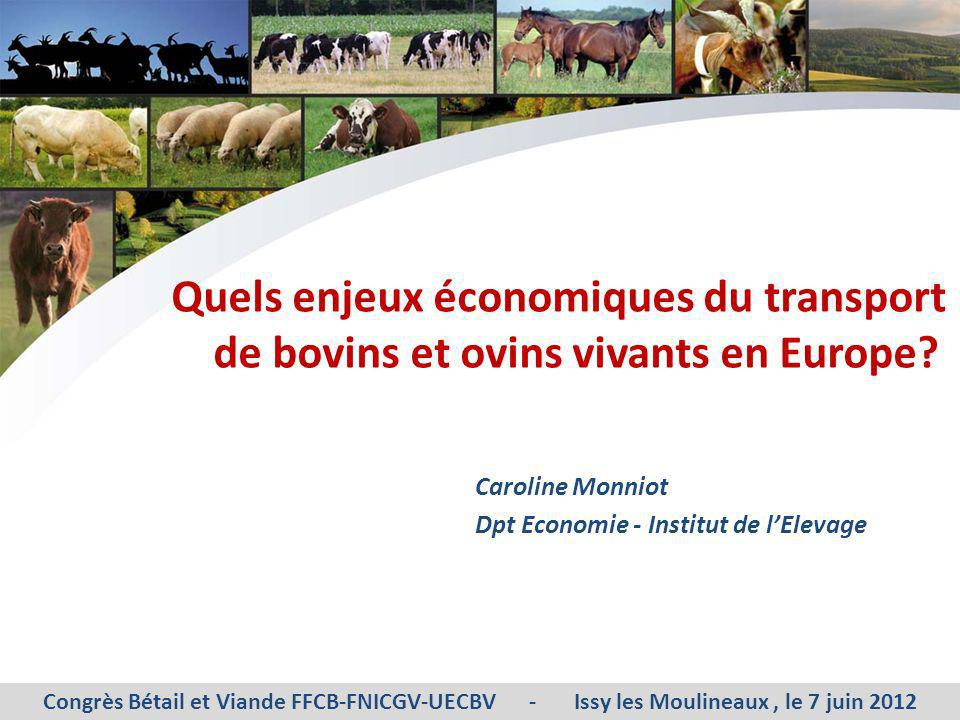 Quels enjeux économiques du transport de bovins et ovins vivants en Europe