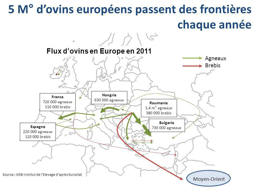 Flux d'ovins en Europe en 2011