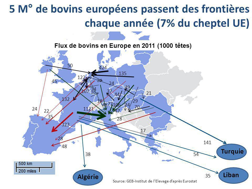Flux de bovins en Europe en 2011 (1000 têtes)
