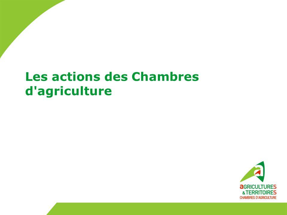 Les actions des Chambres d agriculture