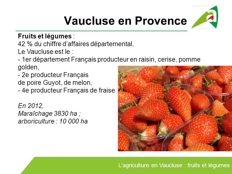 Les circuits courts en vaucluse ppt video online t l charger - Chambre d agriculture du vaucluse ...