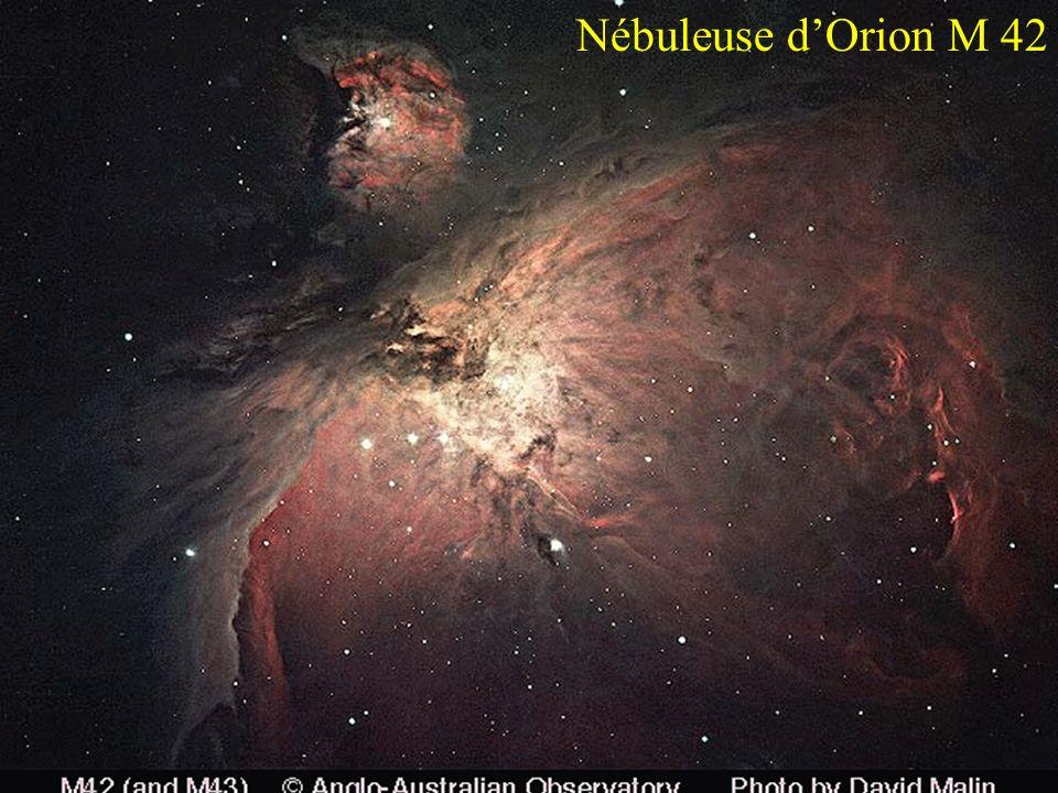 Nébuleuse d'Orion M 42