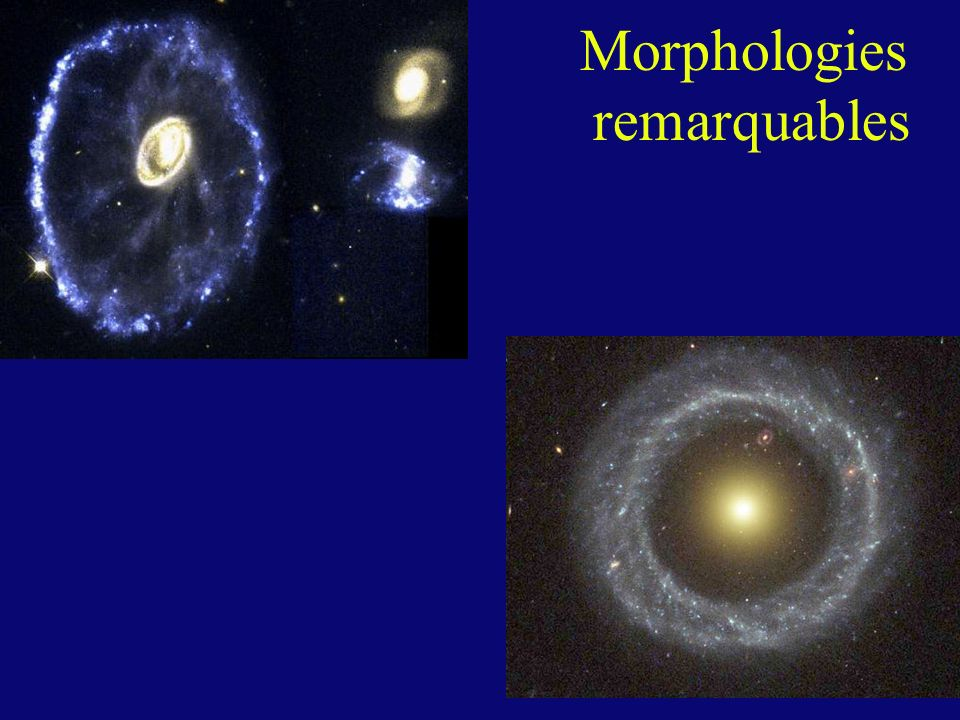 Morphologies remarquables