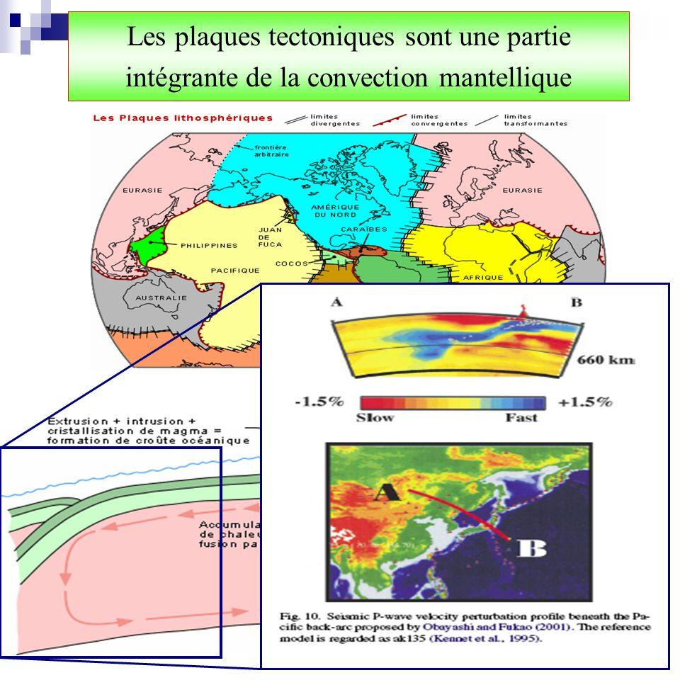 Les plaques tectoniques sont une partie intégrante de la convection mantellique