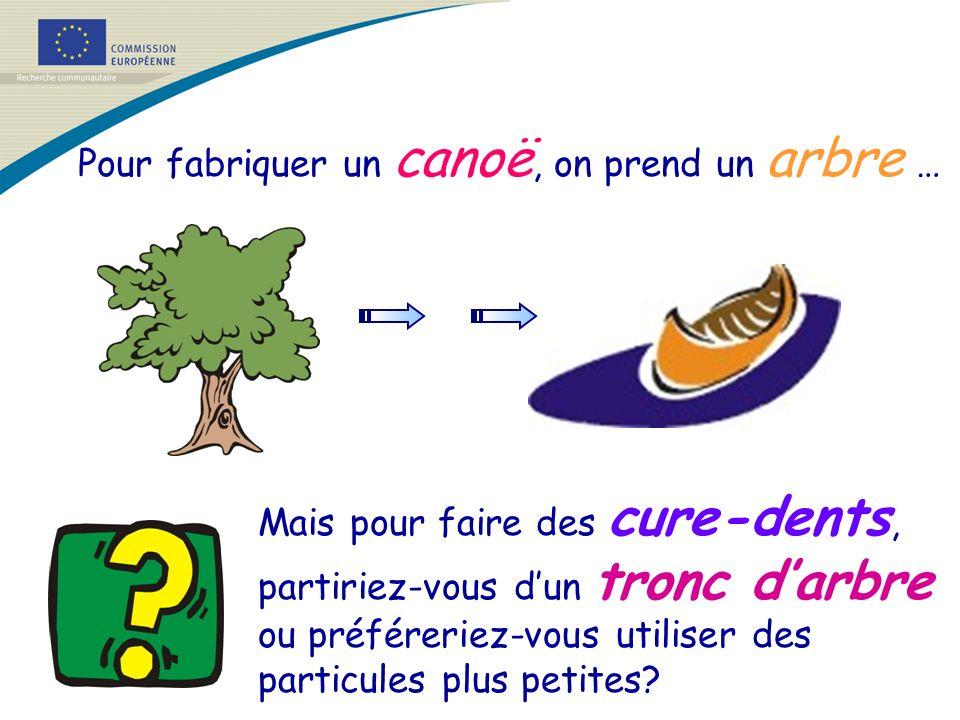 Pour fabriquer un canoë, on prend un arbre …