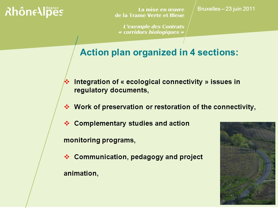 Action plan organized in 4 sections: