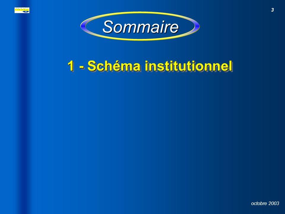 Sommaire 1 - Schéma institutionnel