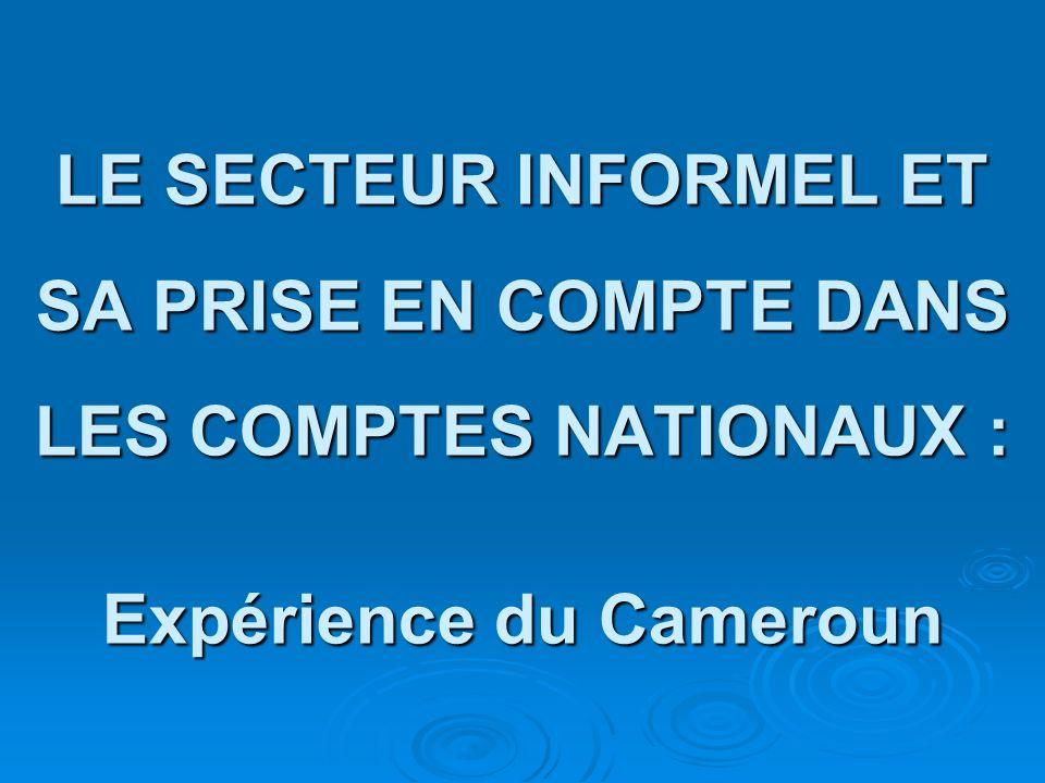 LE SECTEUR INFORMEL ET SA PRISE EN COMPTE DANS LES COMPTES NATIONAUX : Expérience du Cameroun