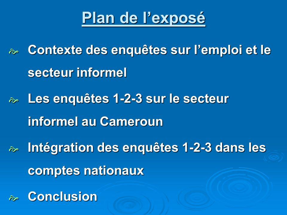 Plan de l'exposé Contexte des enquêtes sur l'emploi et le secteur informel. Les enquêtes 1-2-3 sur le secteur informel au Cameroun.