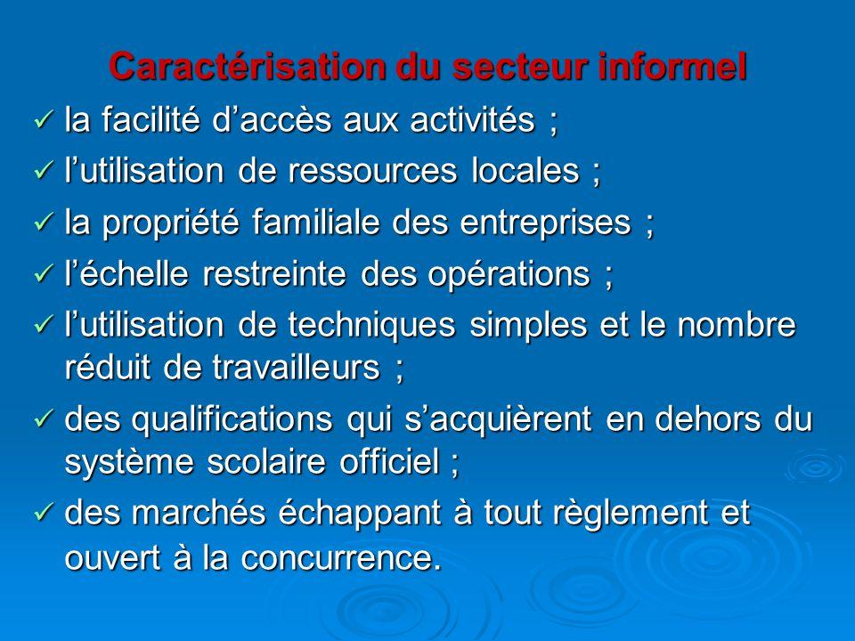 Caractérisation du secteur informel