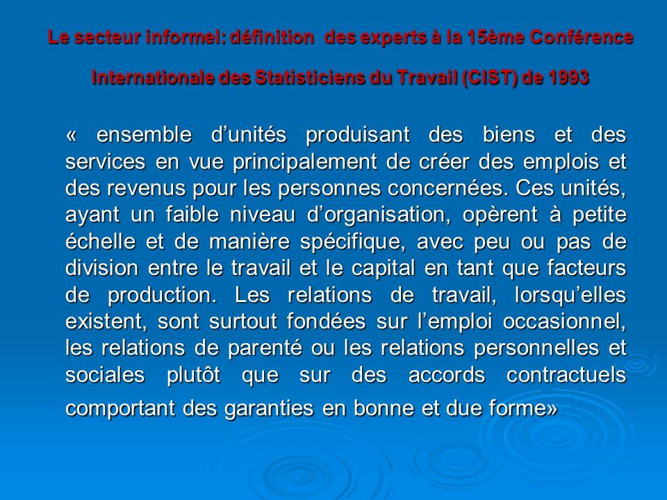 Le secteur informel: définition des experts à la 15ème Conférence Internationale des Statisticiens du Travail (CIST) de 1993