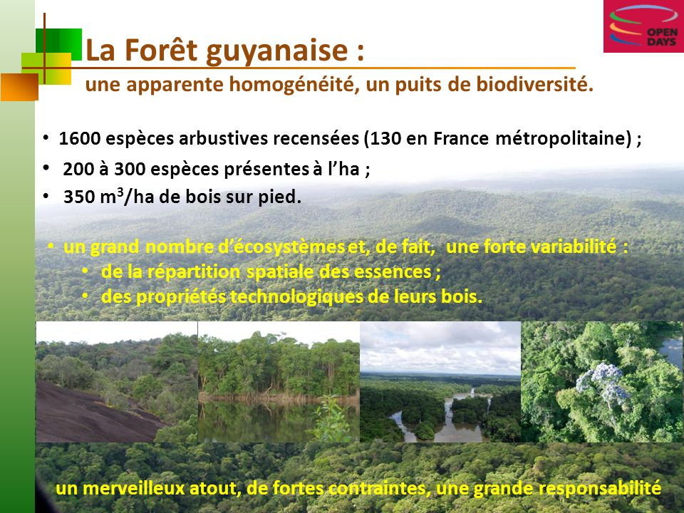 La Forêt guyanaise : une apparente homogénéité, un puits de biodiversité. 1600 espèces arbustives recensées (130 en France métropolitaine) ;