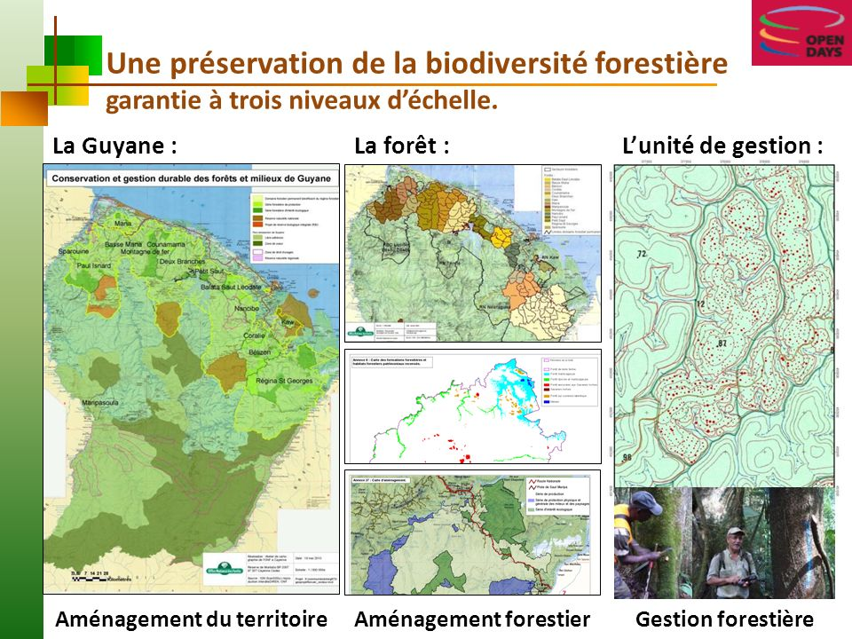 Aménagement du territoire Aménagement forestier