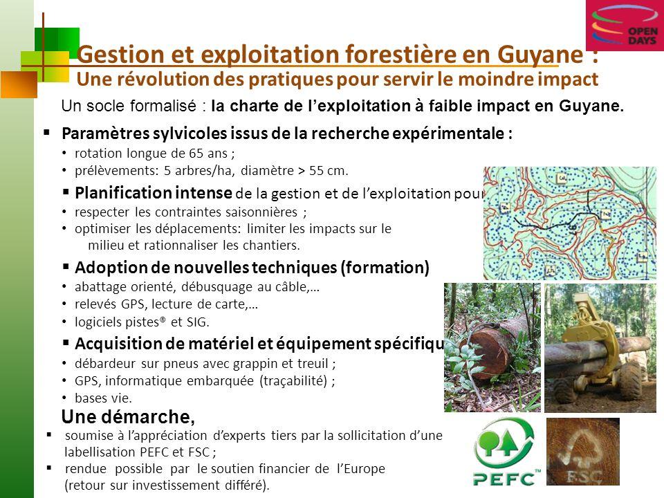 Gestion et exploitation forestière en Guyane :