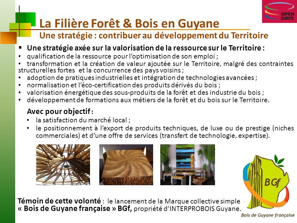 La Filière Forêt & Bois en Guyane