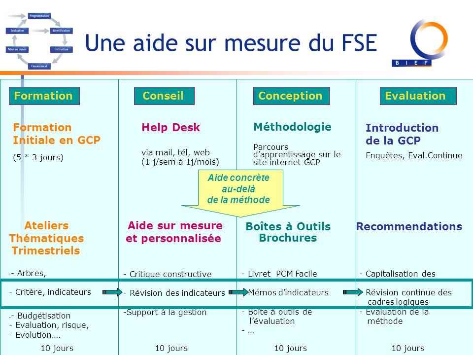 Une aide sur mesure du FSE