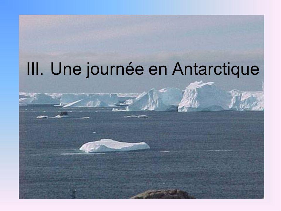 III. Une journée en Antarctique
