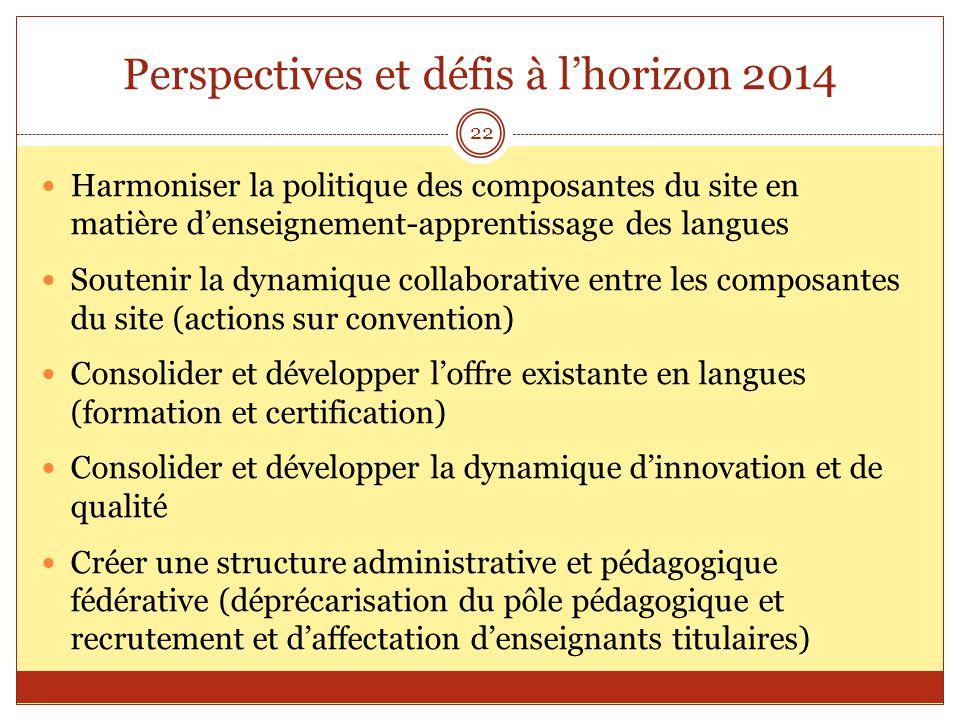 Perspectives et défis à l'horizon 2014