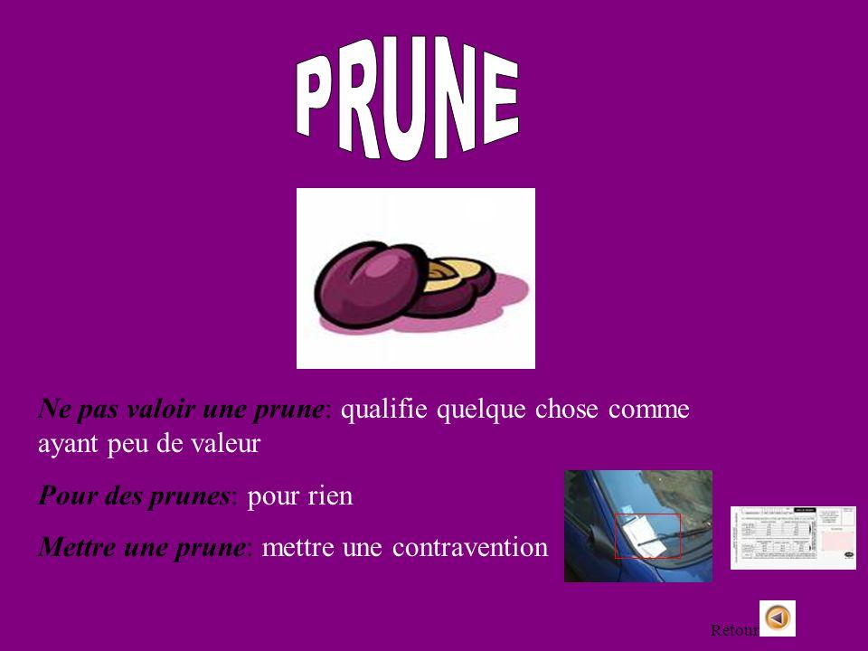 PRUNENe pas valoir une prune: qualifie quelque chose comme ayant peu de valeur. Pour des prunes: pour rien.