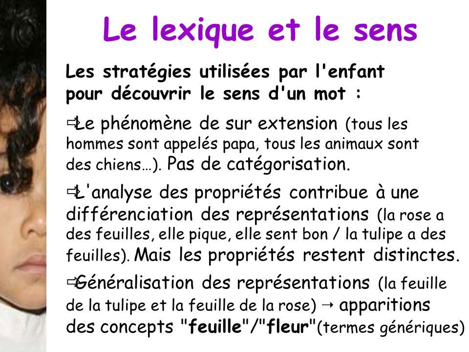 Le lexique et le sens Les stratégies utilisées par l enfant pour découvrir le sens d un mot :