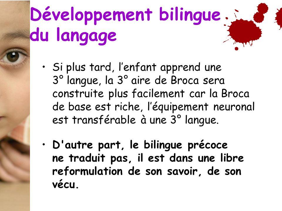 Développement bilingue du langage