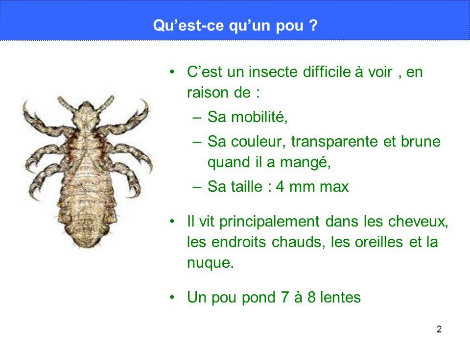 C'est un insecte difficile à voir , en raison de : Sa mobilité,
