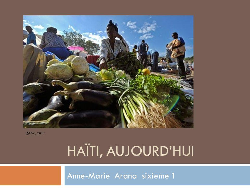 HAÏTI, AUJOURD'HUI @FAO, 2010 Anne-Marie Arana sixieme 1