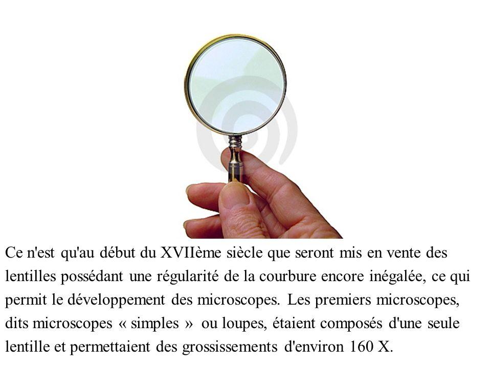 Ce n est qu au début du XVIIème siècle que seront mis en vente des lentilles possédant une régularité de la courbure encore inégalée, ce qui permit le développement des microscopes.