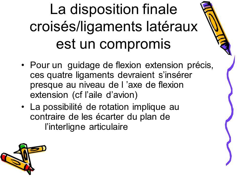 La disposition finale croisés/ligaments latéraux est un compromis