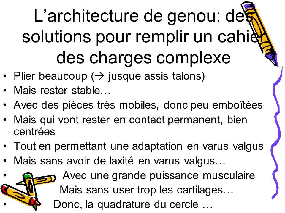 L'architecture de genou: des solutions pour remplir un cahier des charges complexe