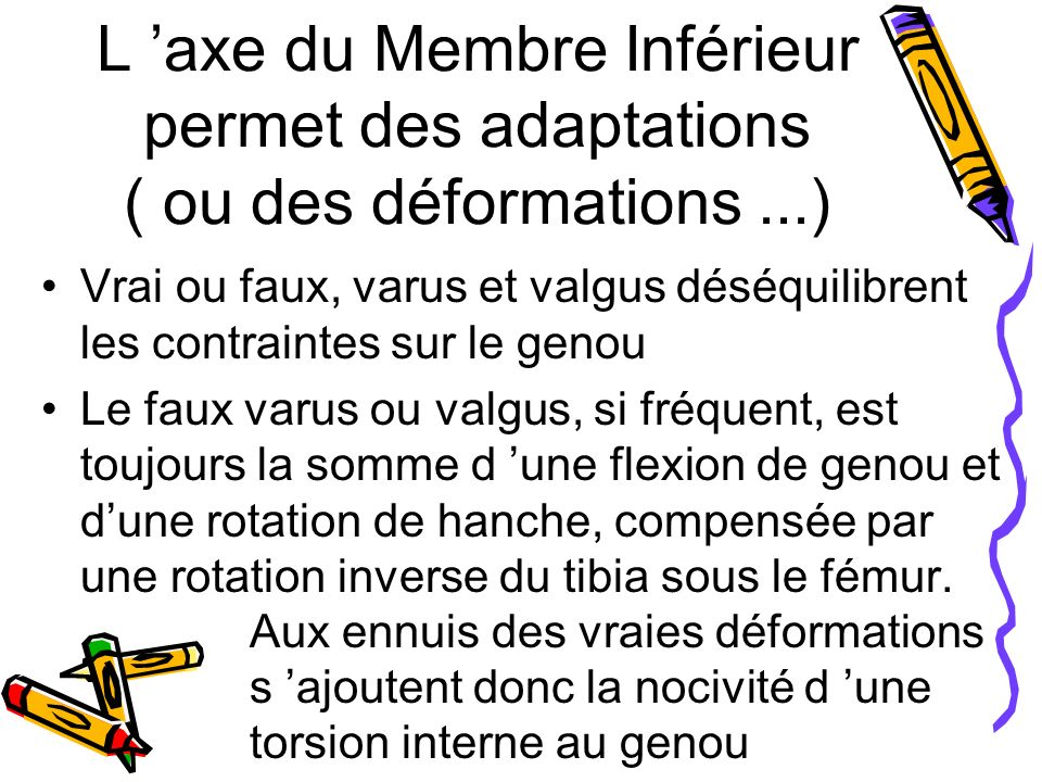 L 'axe du Membre Inférieur permet des adaptations ( ou des déformations ...)